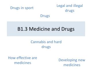 B1.3 Medicine and Drugs