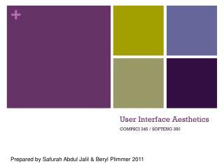 User Interface Aesthetics