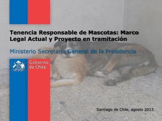 Tenencia Responsable de Mascotas: Marco Legal Actual y Proyecto en tramitación