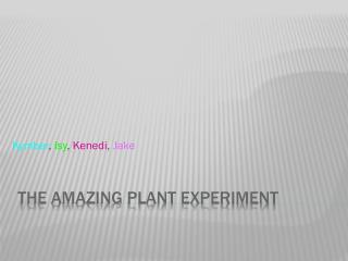 The Amazing Plant Experiment