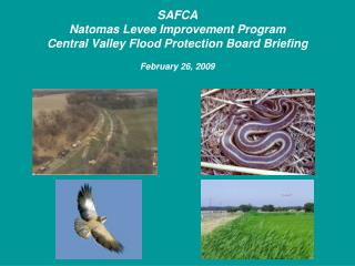 SAFCA Natomas Levee Improvement Program Central Valley Flood Protection Board Briefing  February 26, 2009