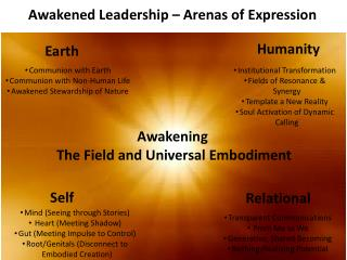 Awakened Leadership – Arenas of Expression