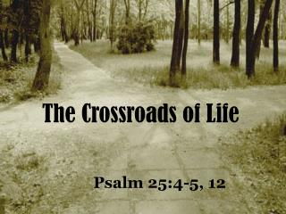 The Crossroads of Life