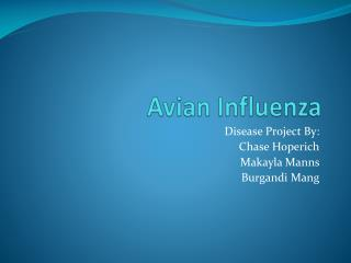 Avian Influenza