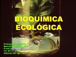 BIOQU MICA  ECOL GICA