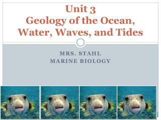 Unit 3 Geology of the Ocean, Water, Waves, and Tides