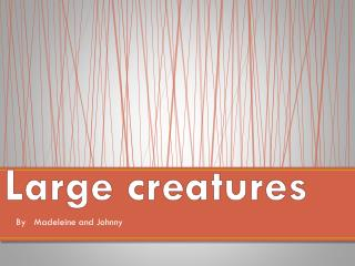 Large creatures