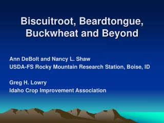 Biscuitroot, Beardtongue, Buckwheat and Beyond
