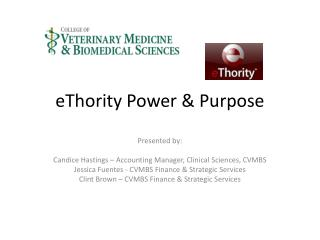 eThority  Power & Purpose