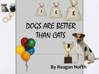 DOGS  ARE BETTER  THAN CATS