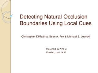 Detecting Natural Occlusion Boundaries Using Local Cues