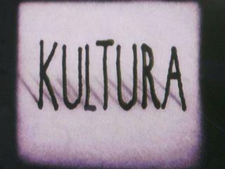Główne dziedziny kultury: