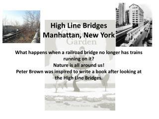 High Line Bridges Manhattan, New York