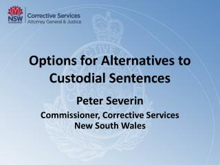 Options for Alternatives to Custodial Sentences