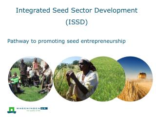 Integrated Seed Sector Development (ISSD)