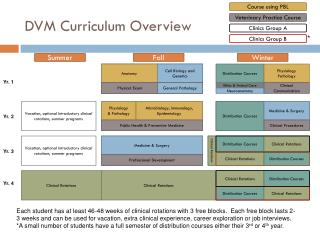 DVM Curriculum Overview