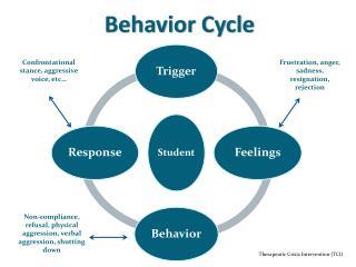 Behavior Cycle