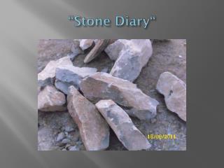 """Stone  Diary """