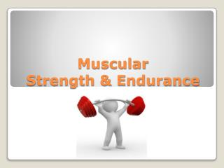 Muscular  Strength & Endurance