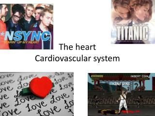 The heart Cardiovascular system
