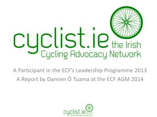 A Participant in the ECF�s Leadership Programme 2013
