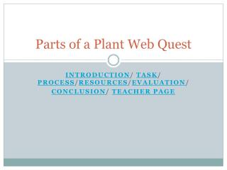 Parts of a Plant Web Quest