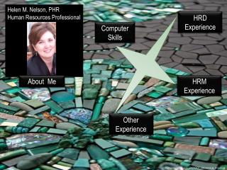 Helen M. Nelson, PHR Experienced HR Professional