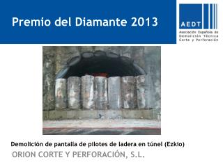 Demolición de pantalla de pilotes de ladera en túnel ( Ezkio )