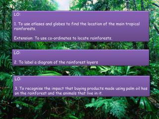 LO:  1. To use atlases and globes to find the location of the main tropical rainforests.
