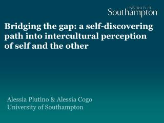 Bridging the gap: a self-discovering path into intercultural perception of self and the other