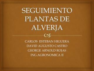 SEGUIMIENTO PLANTAS DE ALVERJA