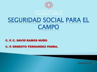 C. P. C. DAVID RAMOS NUÑO C. P. ERNESTO FERNANDEZ PARRA. FEBRERO 2013 .