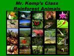 Mr. Kemp s Class  Rainforest Animals