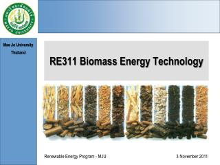 RE311 Biomass Energy Technology