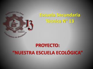 Escuela Secundaria  Técnica N° 13