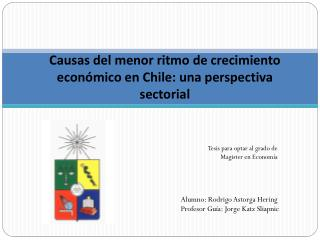 Causas del menor ritmo de crecimiento económico  en Chile: una perspectiva sectorial
