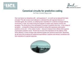 Canonical circuits for predictive coding Karl Friston, University  College London