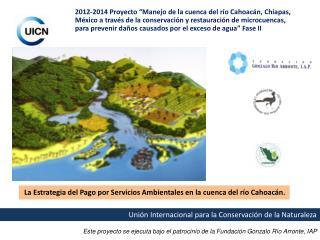 Este proyecto se ejecuta bajo el patrocinio de la Fundación Gonzalo Río  Arronte, IAP