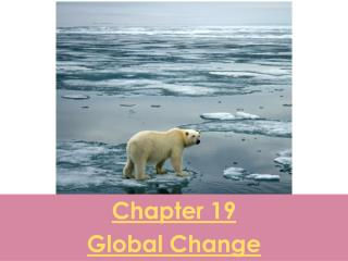 Chapter 19 Global Change
