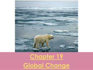 Chapter 19 Global Change