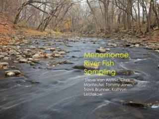 Menomonee River Fish Sampling