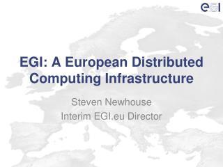 EGI: A European Distributed Computing Infrastructure