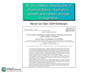 On the relative magnitudes of photosynthesis, respiration, growth and carbon storage in vegetation