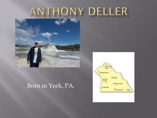 Anthony Deller