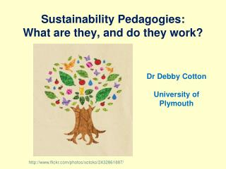Sustainability Pedagogies:  What are they, and do they work