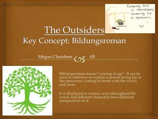 The Outsiders Key Concept: Bildungsroman
