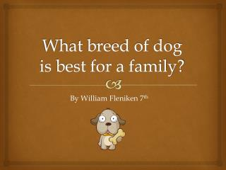What breed of dog is best for a family?
