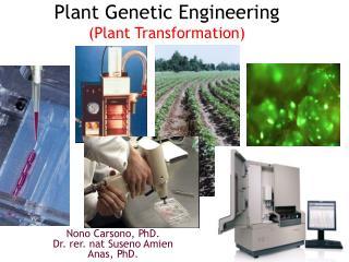 Plant Genetic  Engineering ( Plant Transformation)