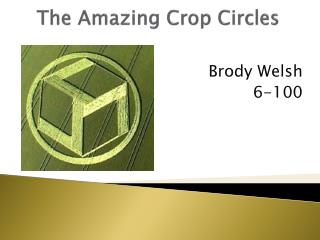 The Amazing Crop Circles