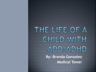 The Life of a child with ADD/ADHD